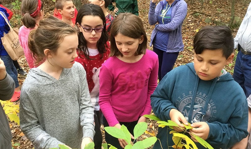 Creating a Legacy of Sustainability for Putnam Valley Schools