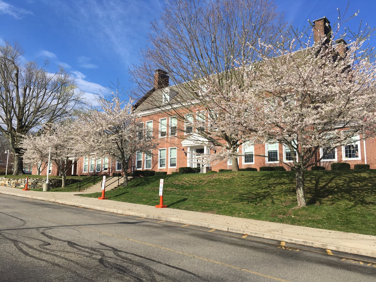 PVES in Spring